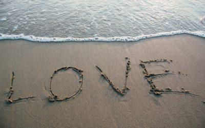 Liebe auf Auftrag: Online vs. Offline Partnersuche